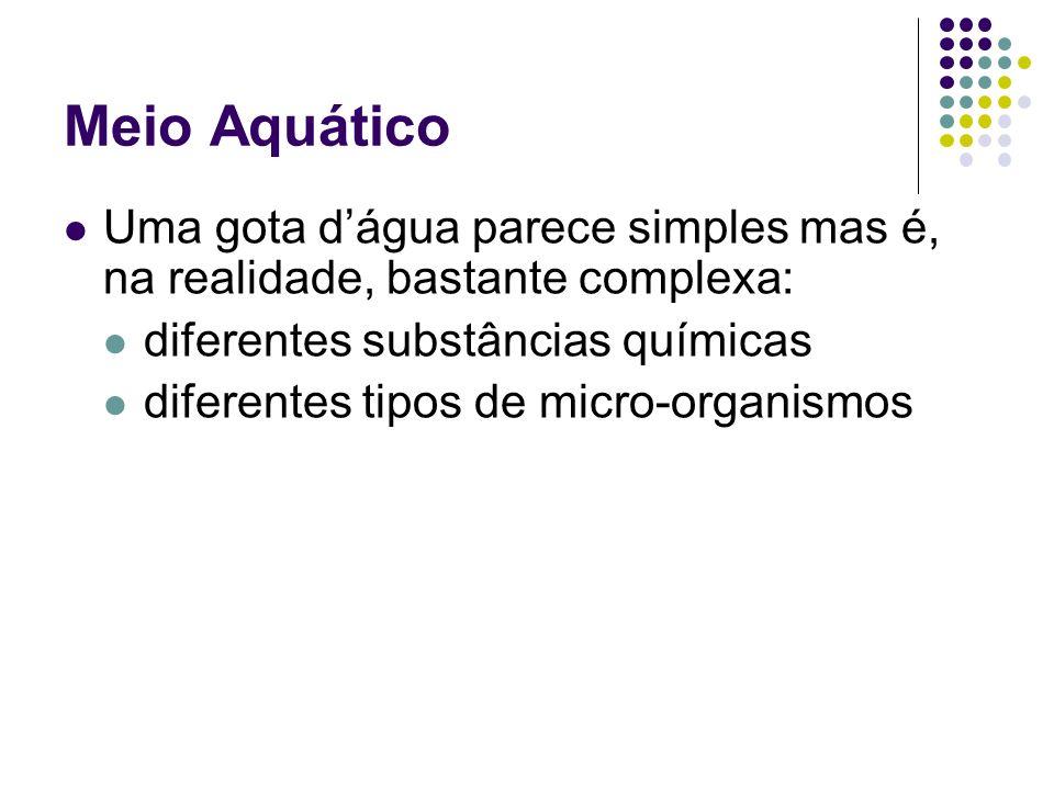 Meio Aquático Uma gota d'água parece simples mas é, na realidade, bastante complexa: diferentes substâncias químicas.