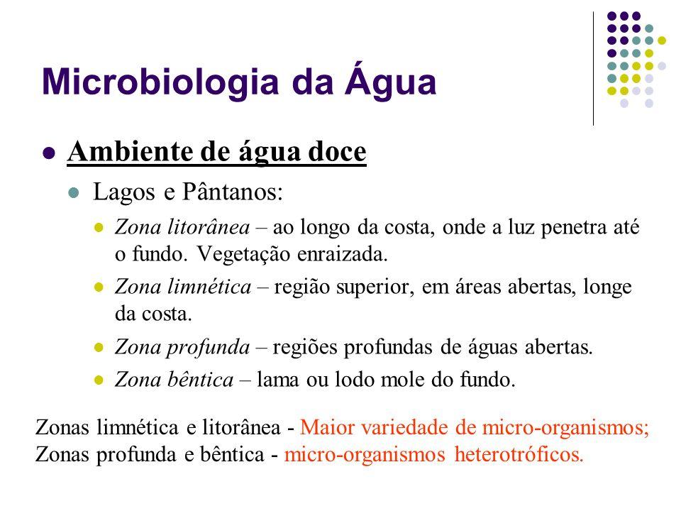 Microbiologia da Água Ambiente de água doce Lagos e Pântanos: