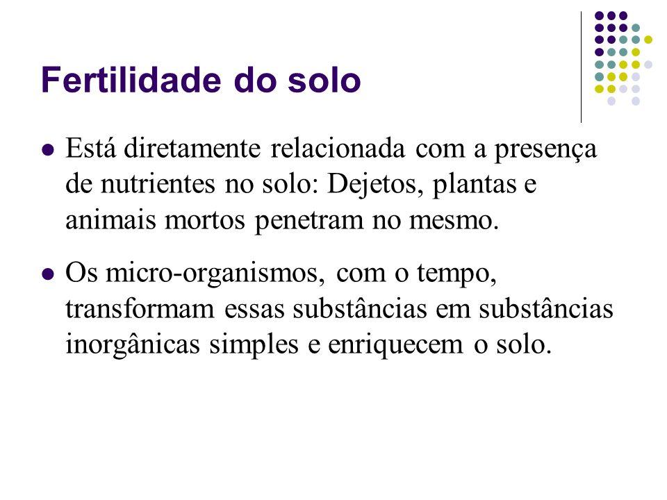 Fertilidade do solo Está diretamente relacionada com a presença de nutrientes no solo: Dejetos, plantas e animais mortos penetram no mesmo.