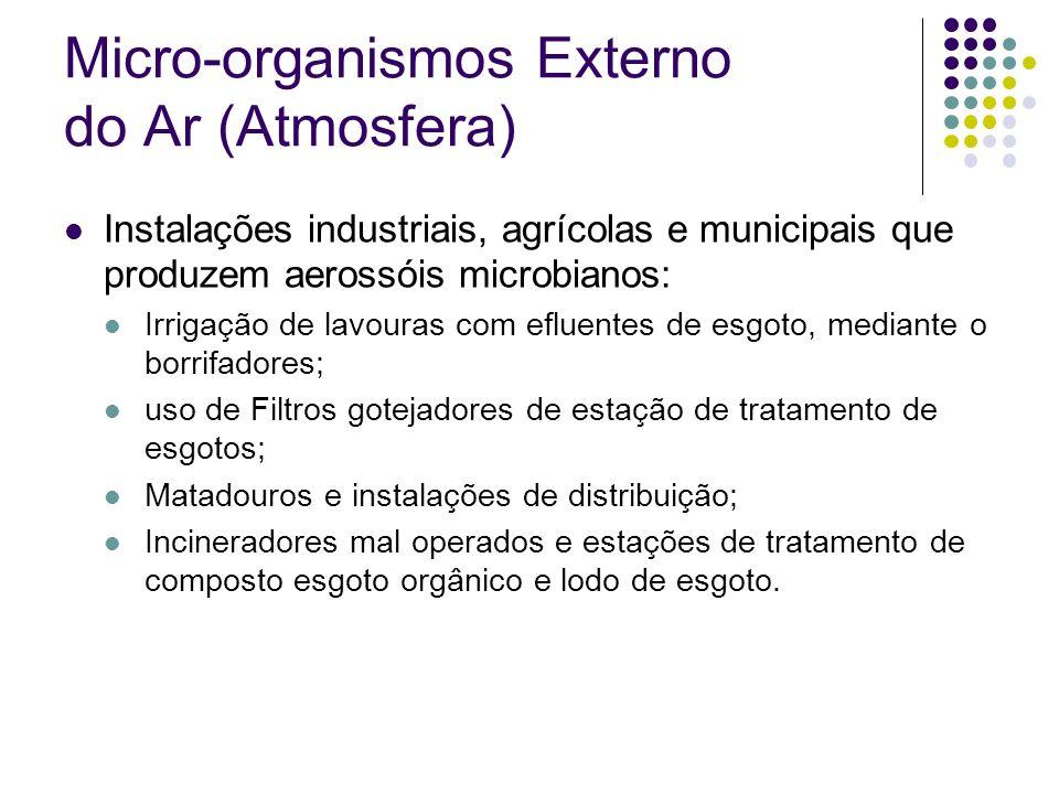 Micro-organismos Externo do Ar (Atmosfera)