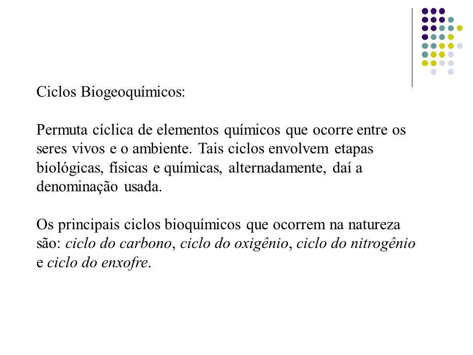 Ciclos Biogeoquímicos: