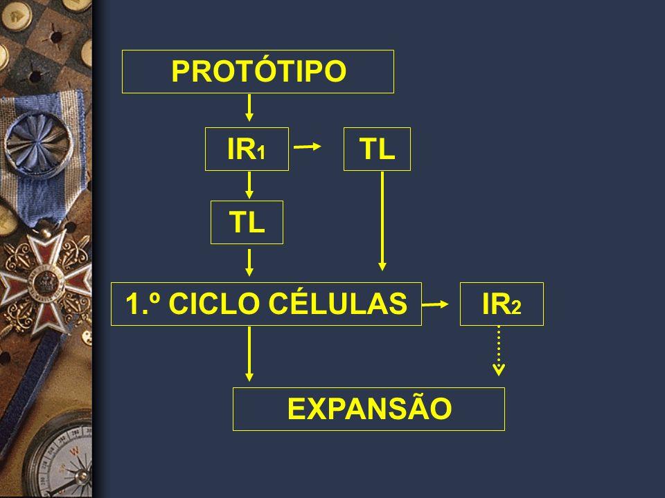 PROTÓTIPO IR1 TL 1.º CICLO CÉLULAS TL IR2 EXPANSÃO
