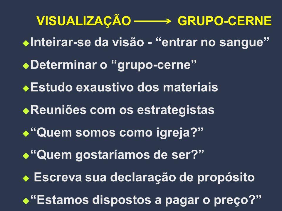 VISUALIZAÇÃO GRUPO-CERNE