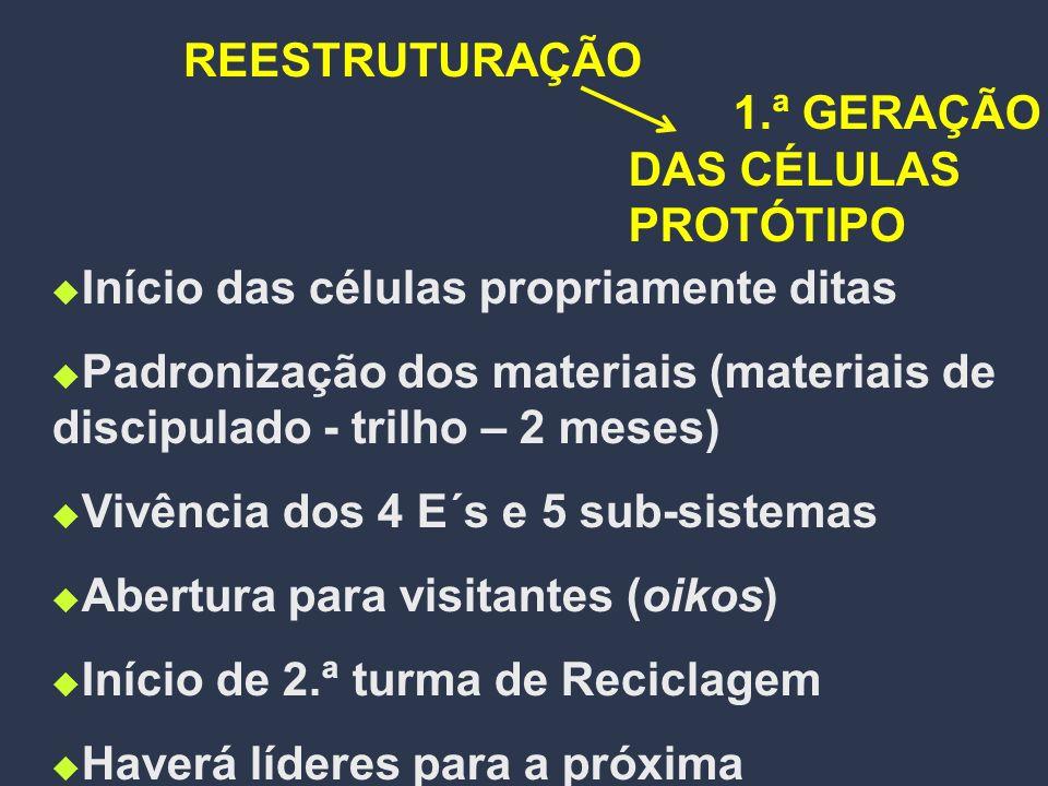REESTRUTURAÇÃO 1.ª GERAÇÃO DAS CÉLULAS PROTÓTIPO. Início das células propriamente ditas.