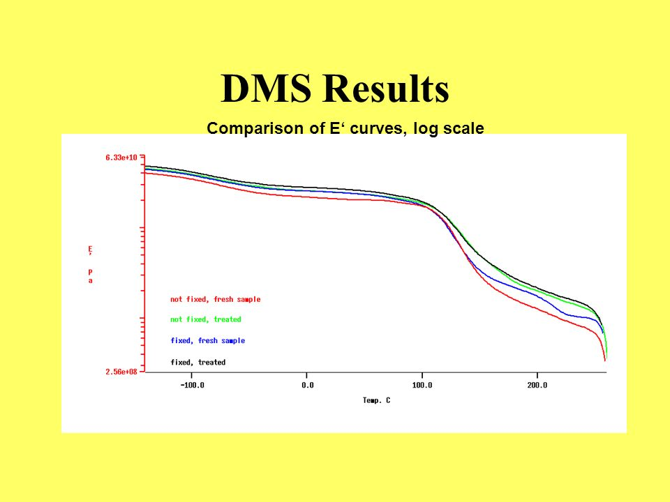 DMS Results Comparison of E' curves, log scale