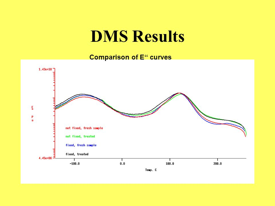 DMS Results Comparison of E'' curves