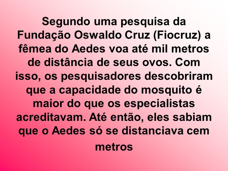 Segundo uma pesquisa da Fundação Oswaldo Cruz (Fiocruz) a fêmea do Aedes voa até mil metros de distância de seus ovos.