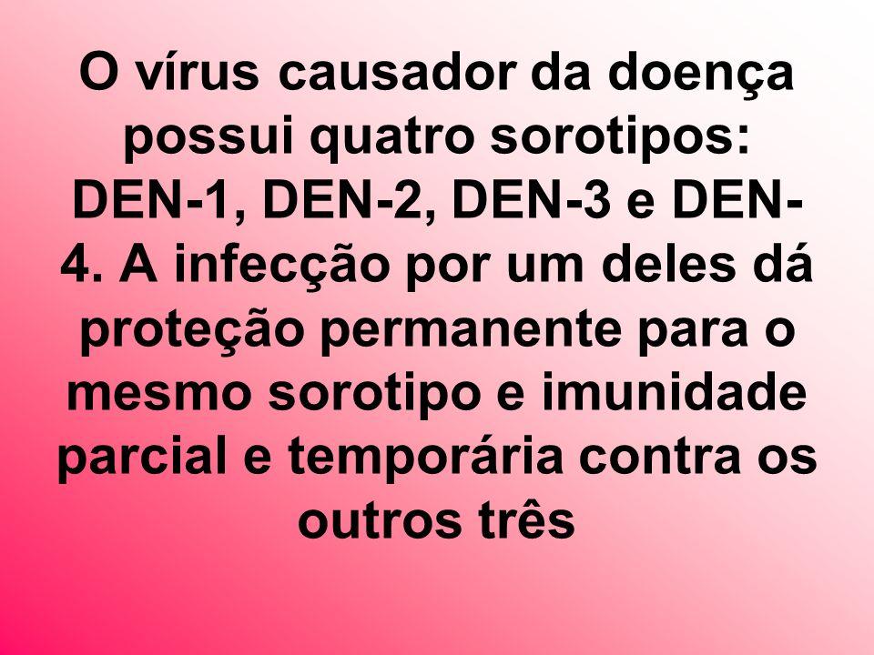 O vírus causador da doença possui quatro sorotipos: DEN-1, DEN-2, DEN-3 e DEN-4.