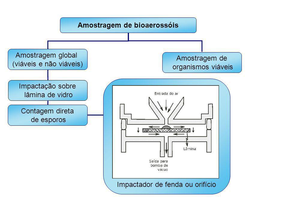 Amostragem de bioaerossóis