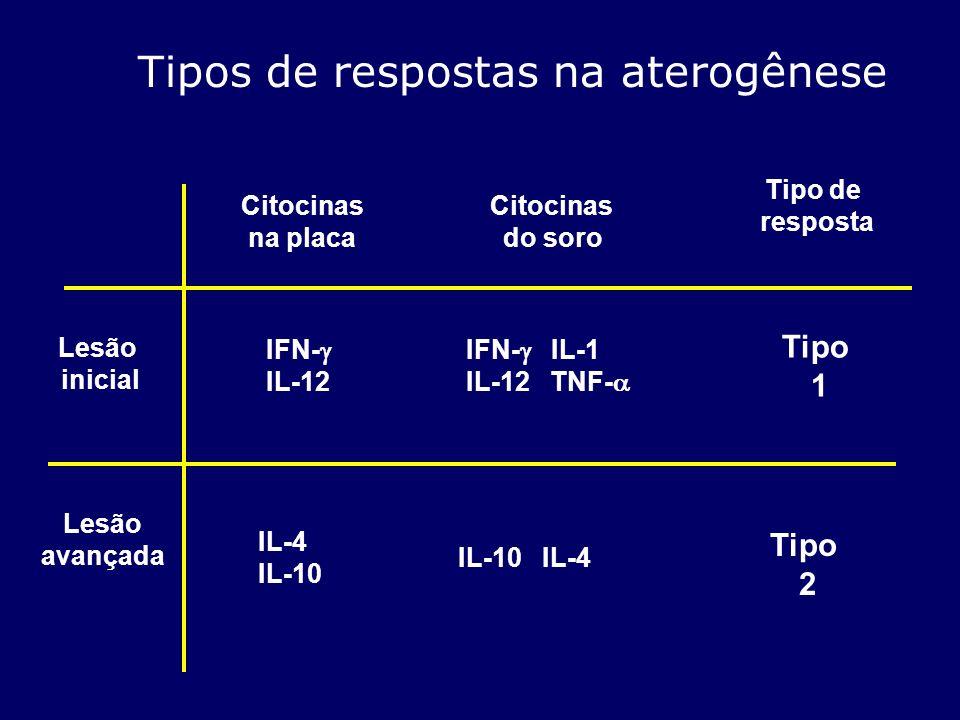 Tipos de respostas na aterogênese