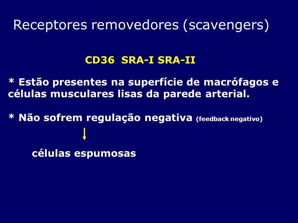 Receptores removedores (scavengers)