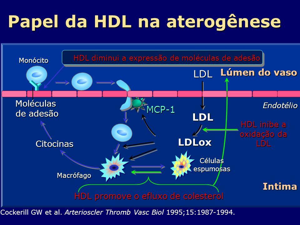 Papel da HDL na aterogênese