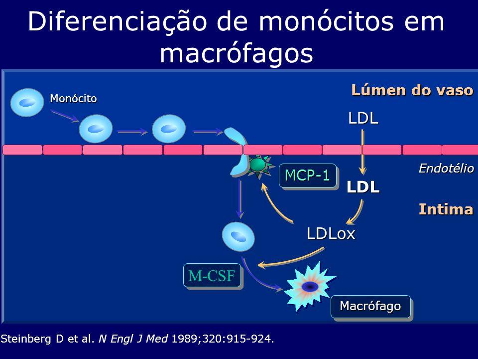 Diferenciação de monócitos em macrófagos