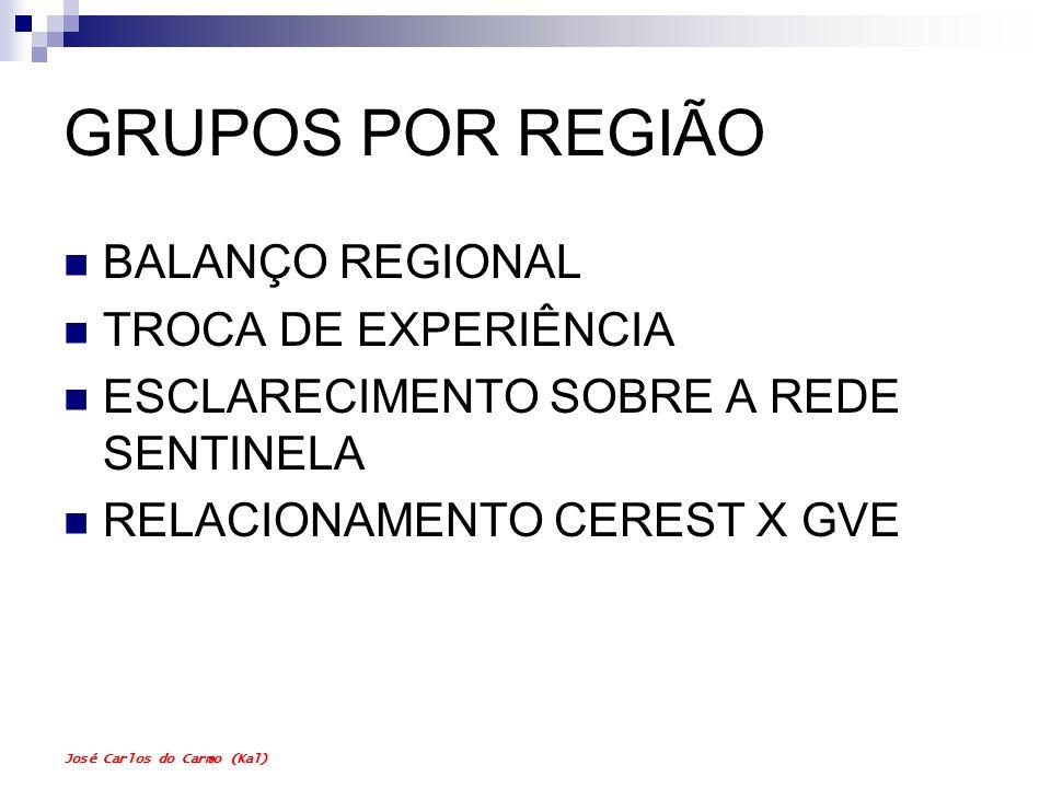 GRUPOS POR REGIÃO BALANÇO REGIONAL TROCA DE EXPERIÊNCIA
