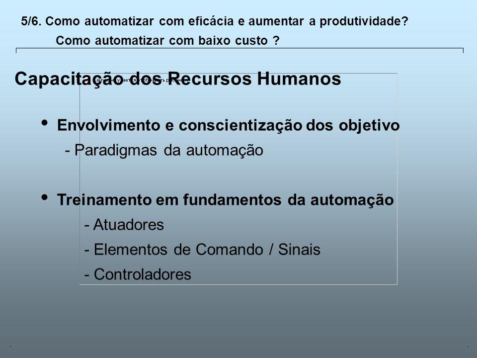 Capacitação dos Recursos Humanos