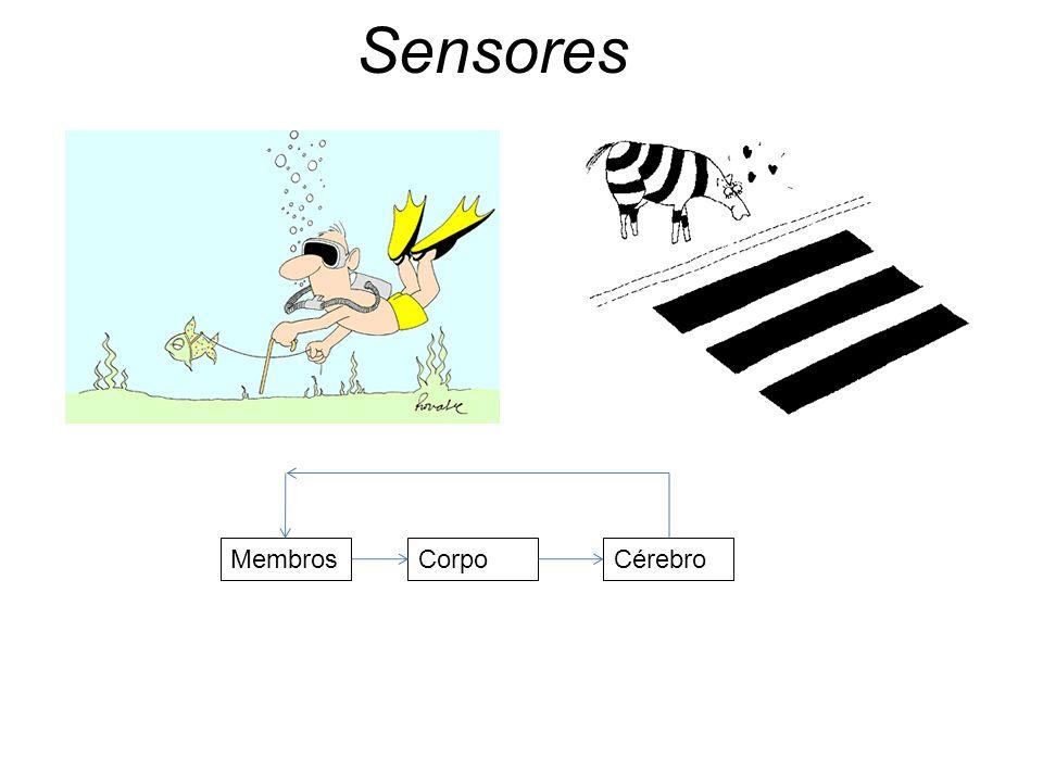 Sensores Membros Corpo Cérebro