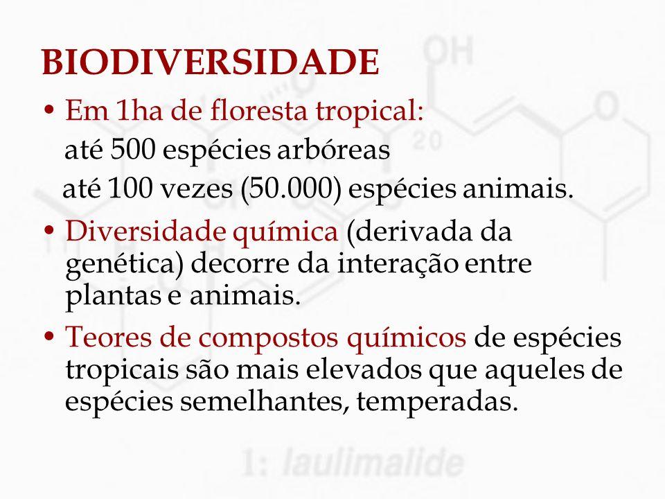 BIODIVERSIDADE Em 1ha de floresta tropical: até 500 espécies arbóreas