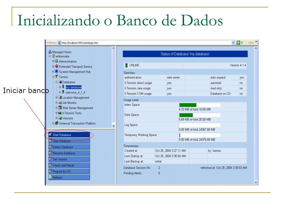 Inicializando o Banco de Dados