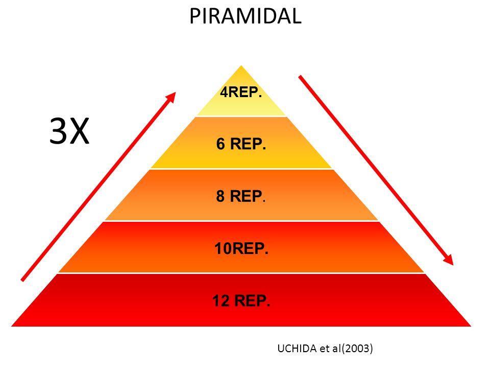 PIRAMIDAL 3X UCHIDA et al(2003)