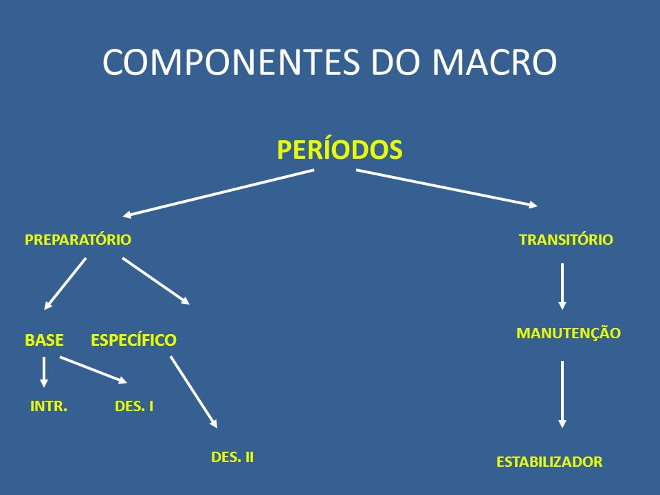 COMPONENTES DO MACRO PERÍODOS BASE ESPECÍFICO PREPARATÓRIO TRANSITÓRIO