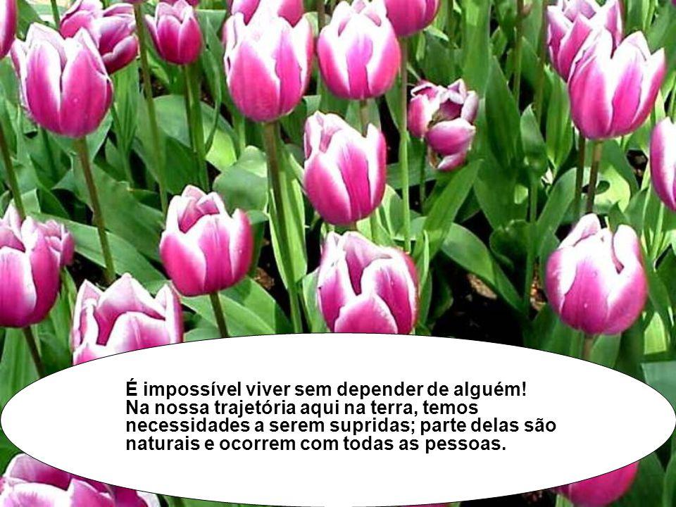 É impossível viver sem depender de alguém
