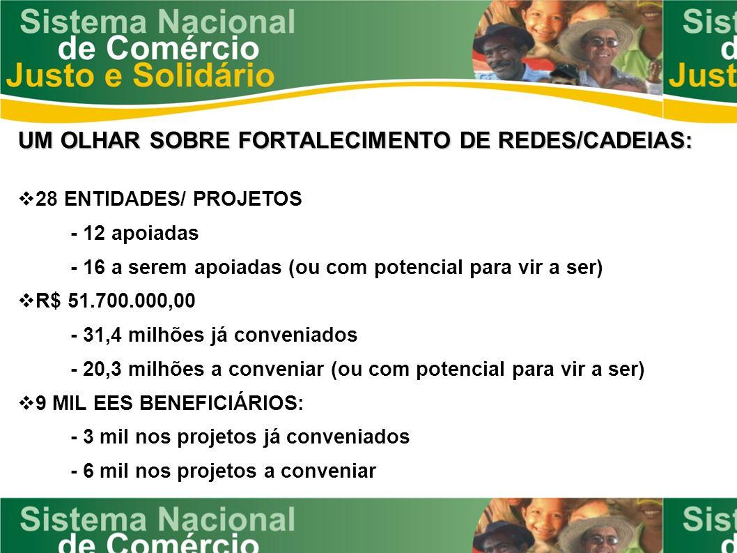 UM OLHAR SOBRE FORTALECIMENTO DE REDES/CADEIAS: