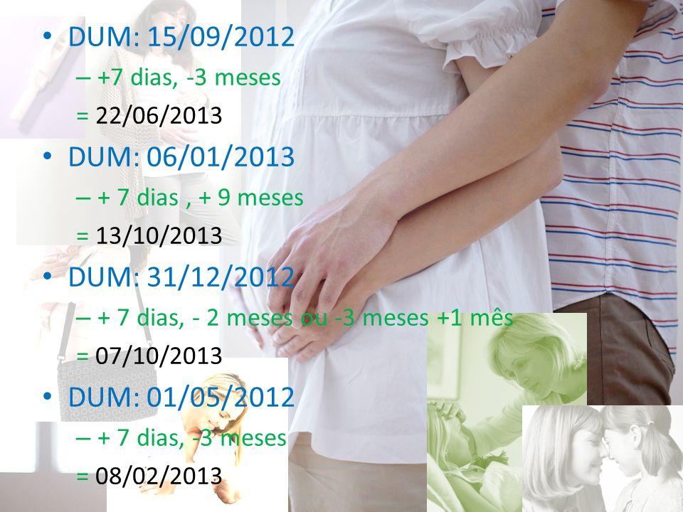 DUM: 15/09/2012 DUM: 06/01/2013 DUM: 31/12/2012 DUM: 01/05/2012