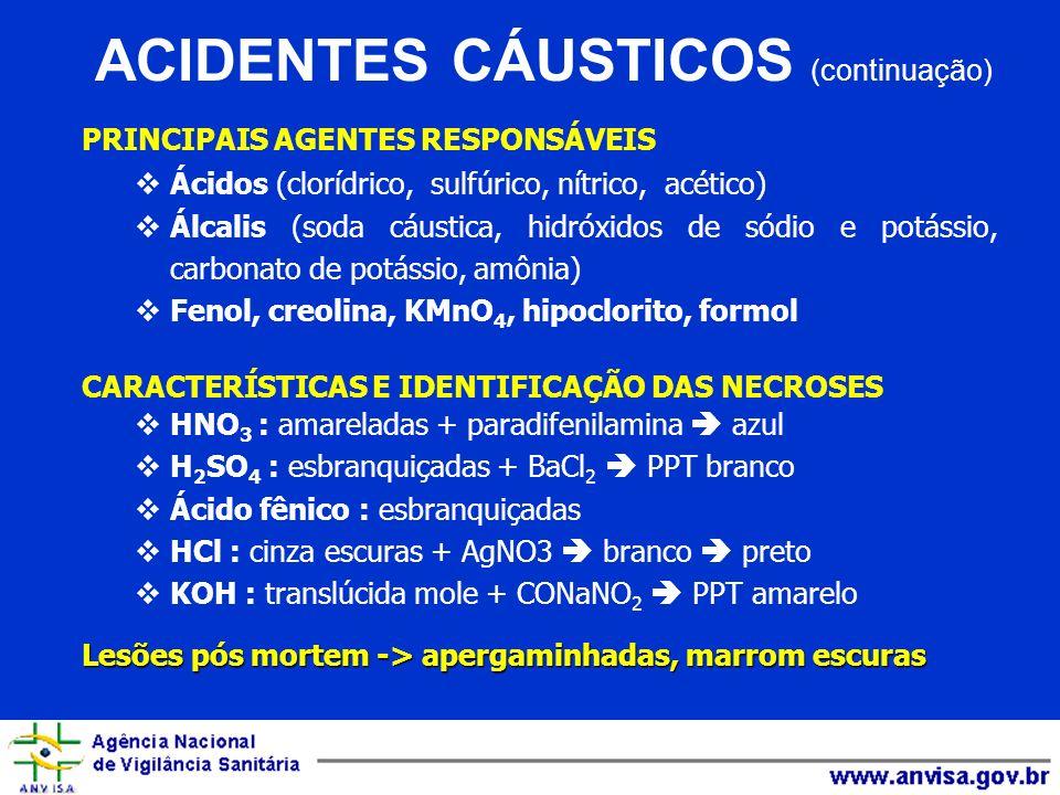 ACIDENTES CÁUSTICOS (continuação)