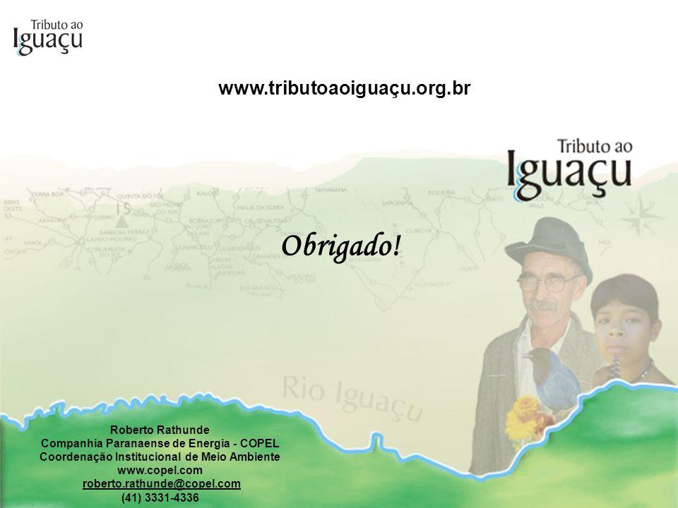 Obrigado! www.tributoaoiguaçu.org.br Roberto Rathunde