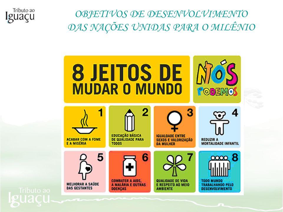 OBJETIVOS DE DESENVOLVIMENTO DAS NAÇÕES UNIDAS PARA O MILÊNIO