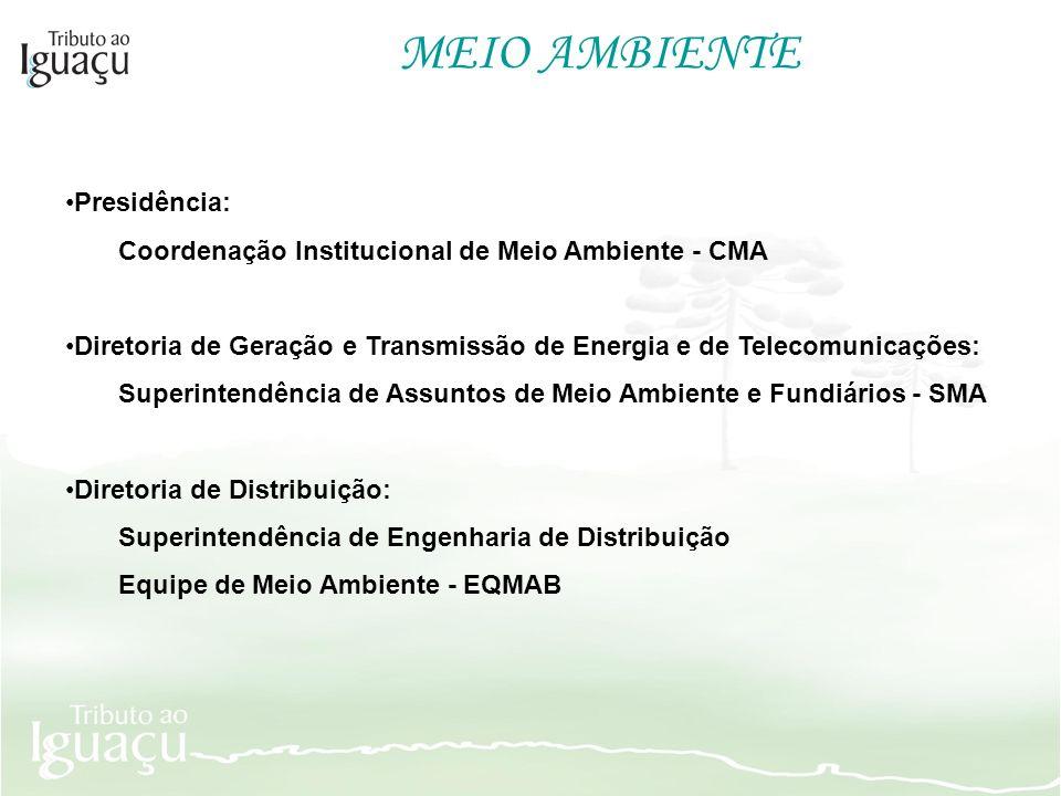 MEIO AMBIENTE Presidência: