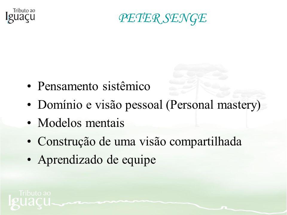 PETER SENGE Pensamento sistêmico