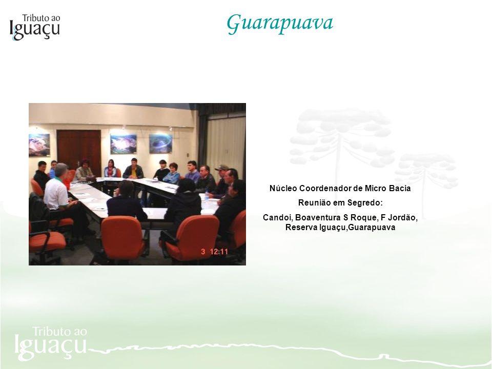 Guarapuava Núcleo Coordenador de Micro Bacia Reunião em Segredo: