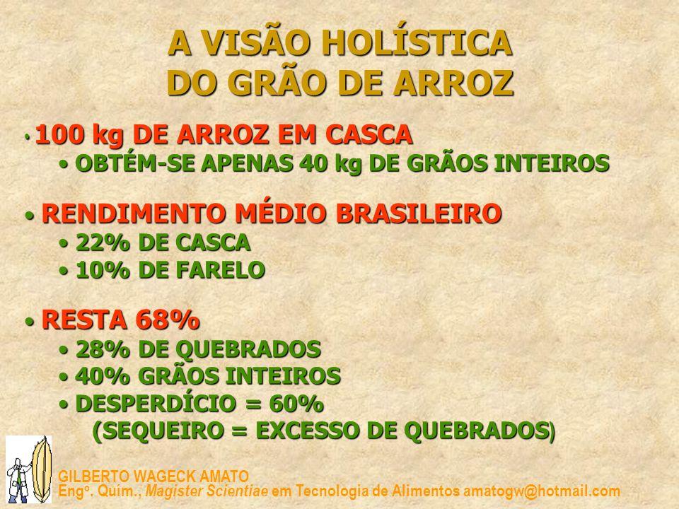 A VISÃO HOLÍSTICA DO GRÃO DE ARROZ