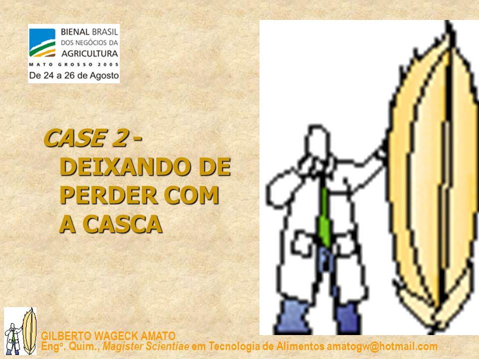 CASE 2 - DEIXANDO DE PERDER COM A CASCA