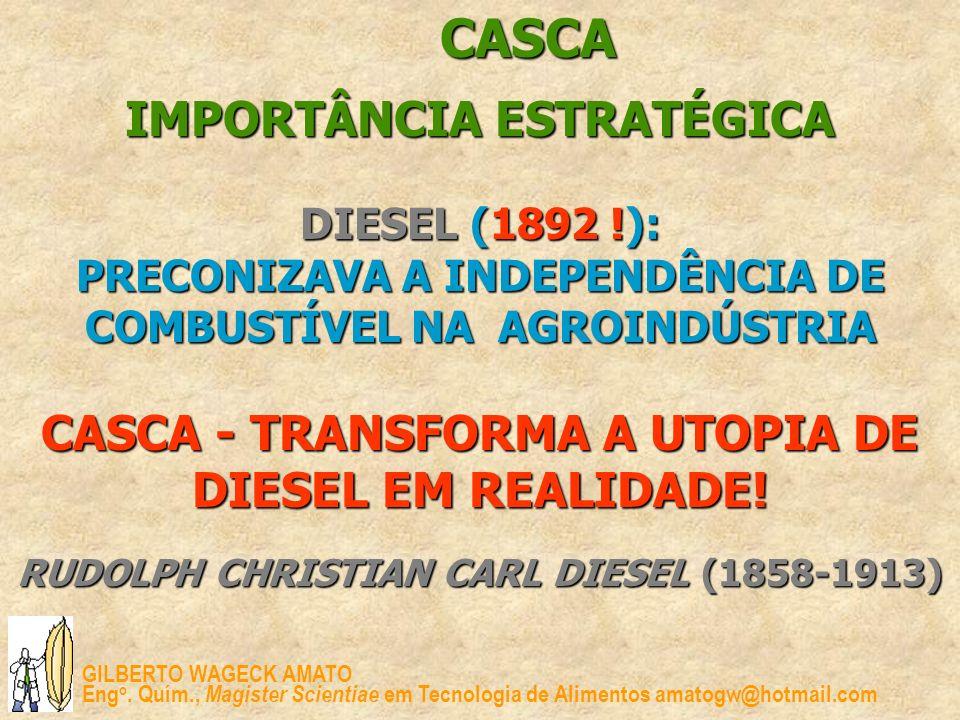 CASCA IMPORTÂNCIA ESTRATÉGICA DIESEL (1892