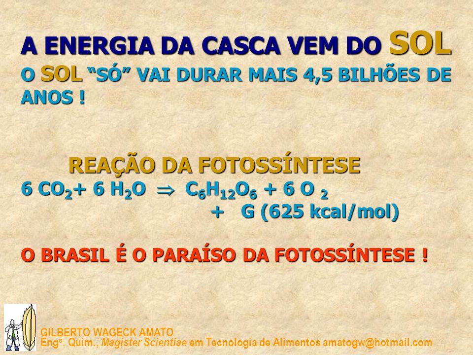 A ENERGIA DA CASCA VEM DO SOL O SOL SÓ VAI DURAR MAIS 4,5 BILHÕES DE ANOS ! REAÇÃO DA FOTOSSÍNTESE 6 CO2+ 6 H2O  C6H12O6 + 6 O 2 + G (625 kcal/mol) O BRASIL É O PARAÍSO DA FOTOSSÍNTESE !