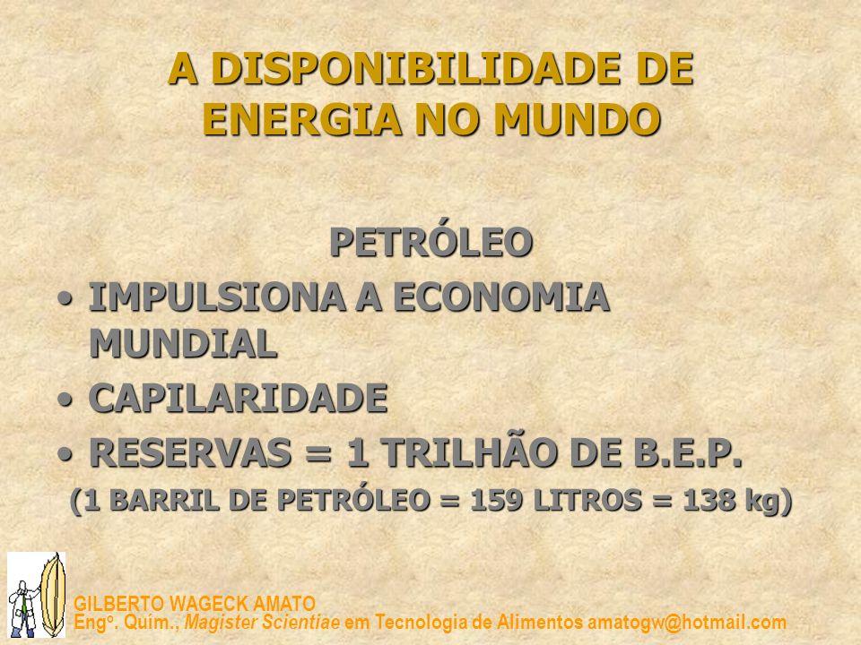 A DISPONIBILIDADE DE ENERGIA NO MUNDO