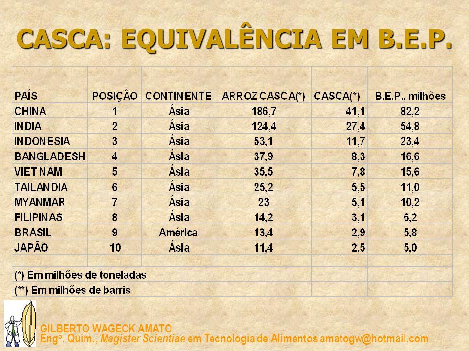 CASCA: EQUIVALÊNCIA EM B.E.P.
