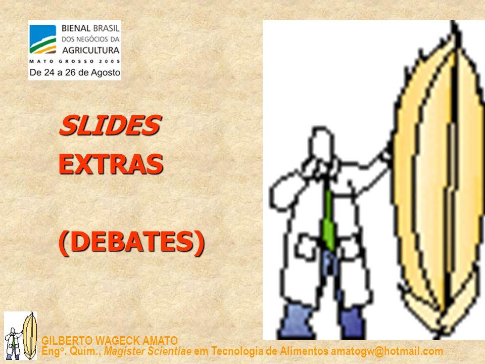 SLIDES EXTRAS (DEBATES)