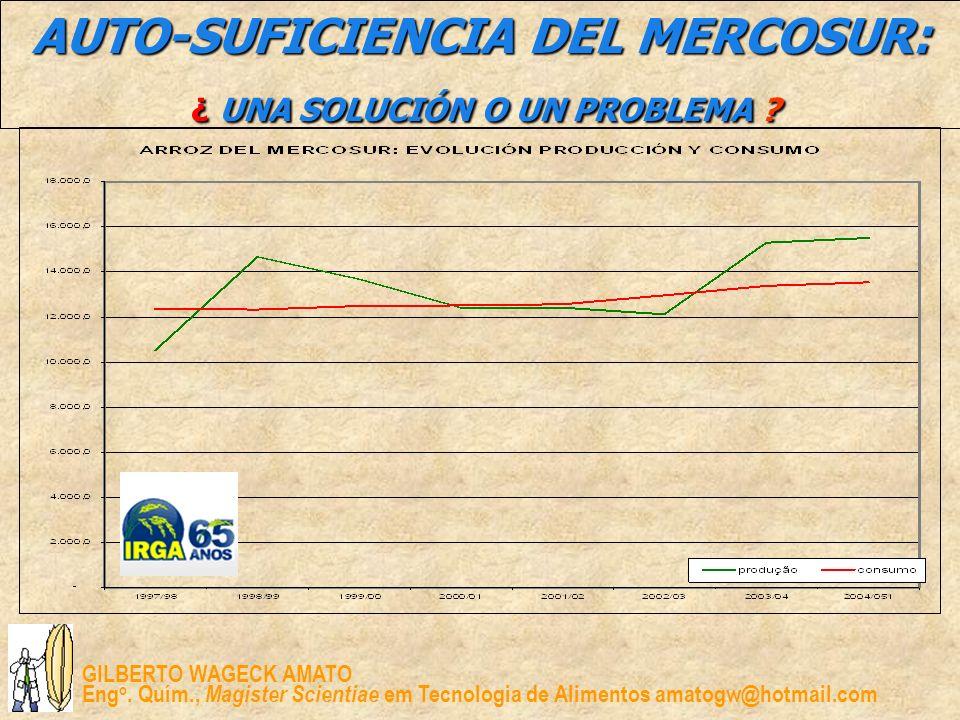 AUTO-SUFICIENCIA DEL MERCOSUR: ¿ UNA SOLUCIÓN O UN PROBLEMA