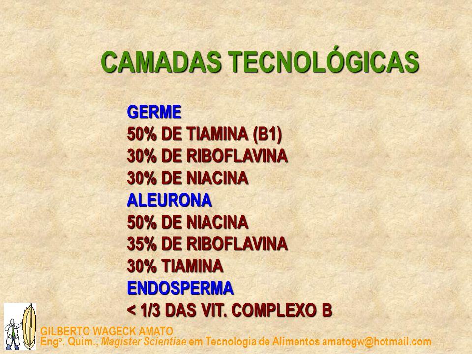 CAMADAS TECNOLÓGICAS GERME. 50% DE TIAMINA (B1) 30% DE RIBOFLAVINA. 30% DE NIACINA. ALEURONA. 50% DE NIACINA.