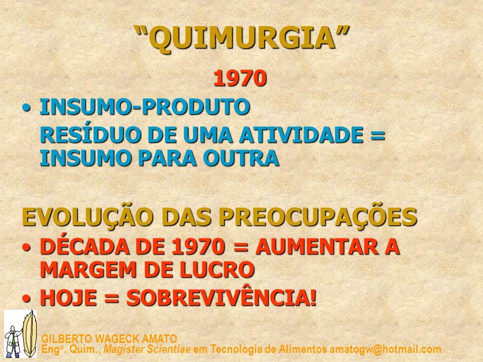 QUIMURGIA EVOLUÇÃO DAS PREOCUPAÇÕES 1970 INSUMO-PRODUTO