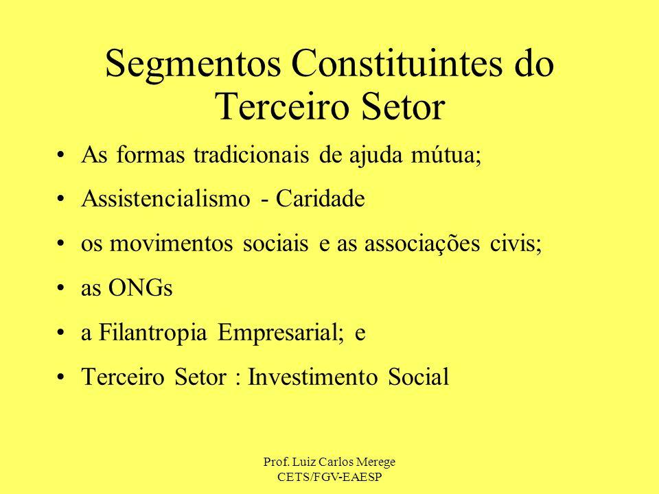 Segmentos Constituintes do Terceiro Setor