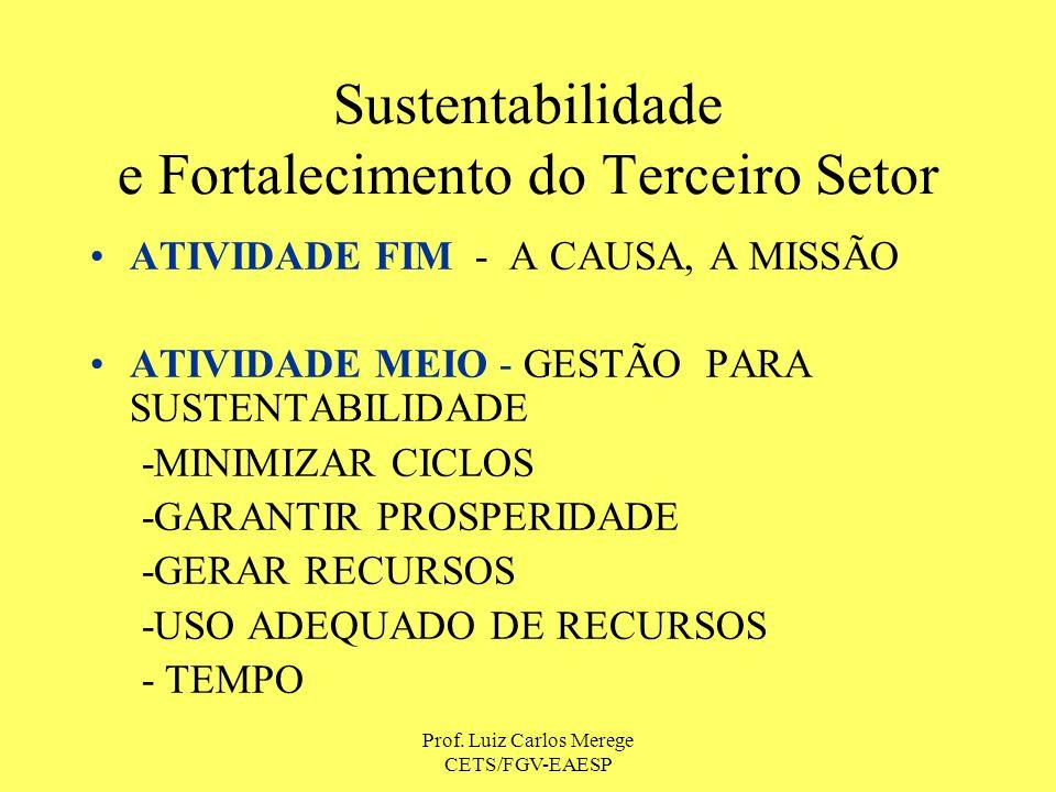 Sustentabilidade e Fortalecimento do Terceiro Setor