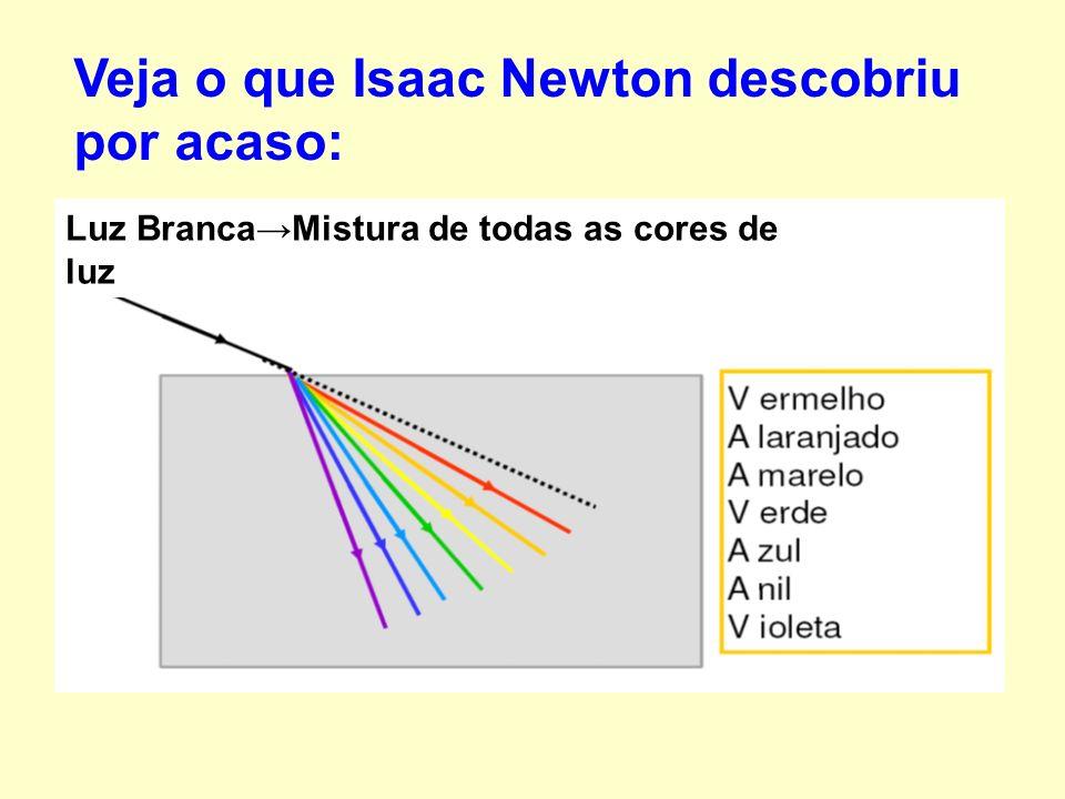 Veja o que Isaac Newton descobriu por acaso: