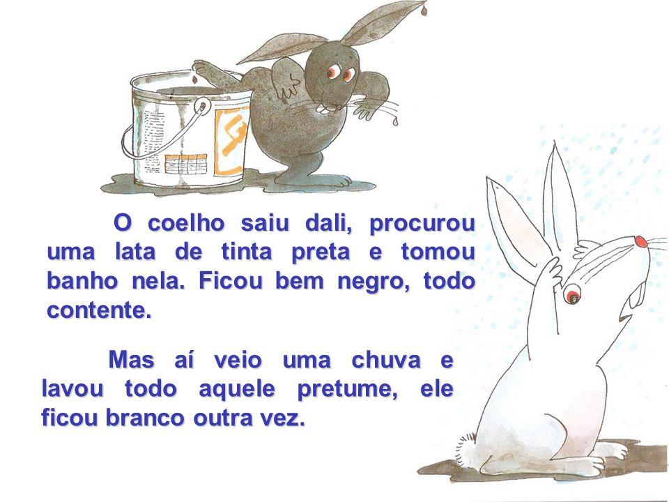 O coelho saiu dali, procurou uma lata de tinta preta e tomou banho nela. Ficou bem negro, todo contente.