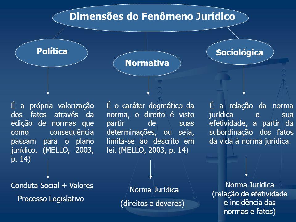 (relação de efetividade e incidência das normas e fatos)