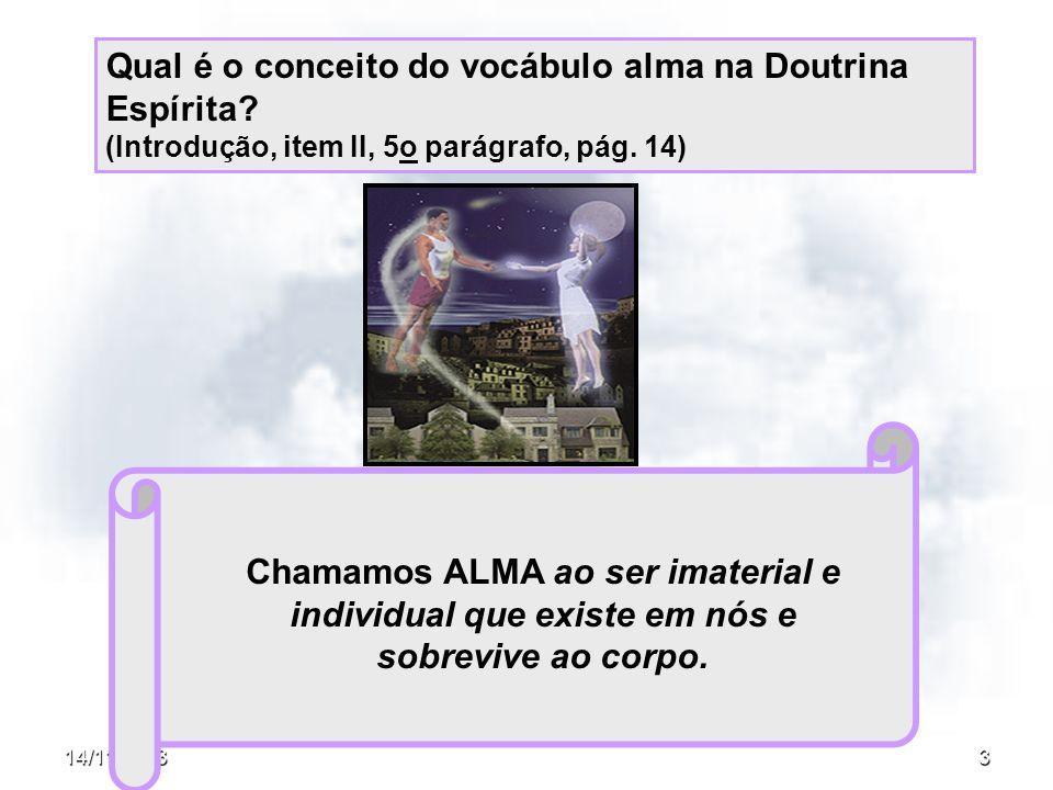 Qual é o conceito do vocábulo alma na Doutrina Espírita