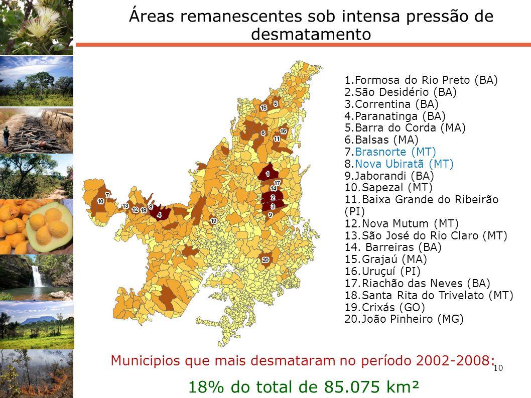 Áreas remanescentes sob intensa pressão de desmatamento